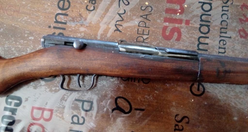 petite carabine,mais quoi? 15298311
