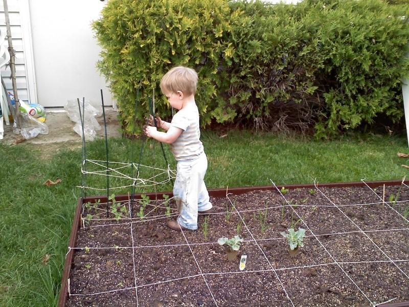 Biggest threat to my garden is...... 04200012