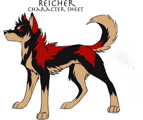 Reicher (Validé) Charac10