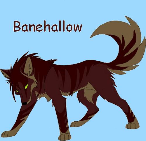 Banehallow (Validé) Charac12