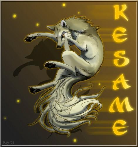 une belle rencontre(pv kasame) Kesame12