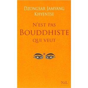 N'est pas Bouddhiste qui veut... 41pnln10