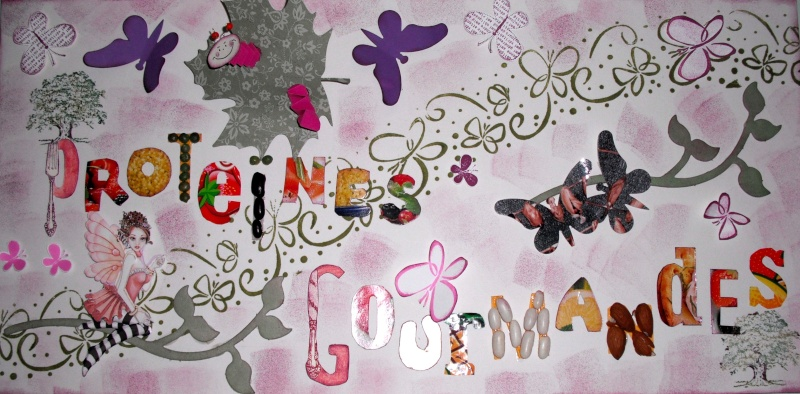 RECAP BANNIERE PROTEINES GOURMANDES & RESULTATS Bannia10