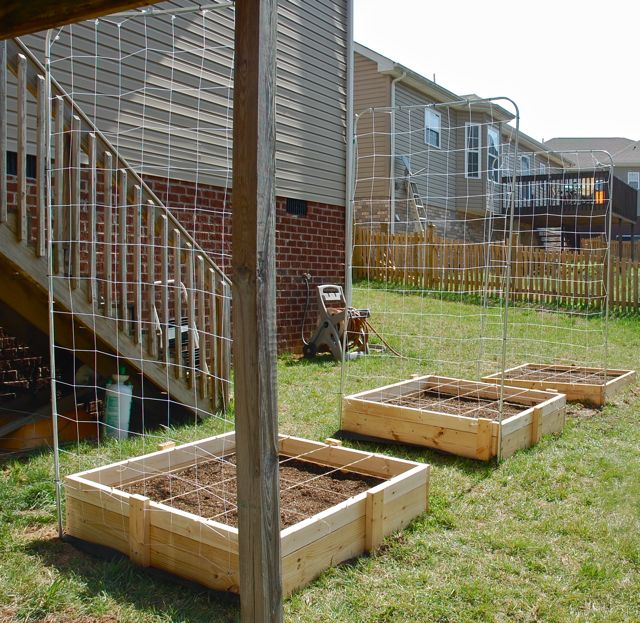 Finished with Boxes, Trellises, and Grids - your feedback appreciated Dsc_3014