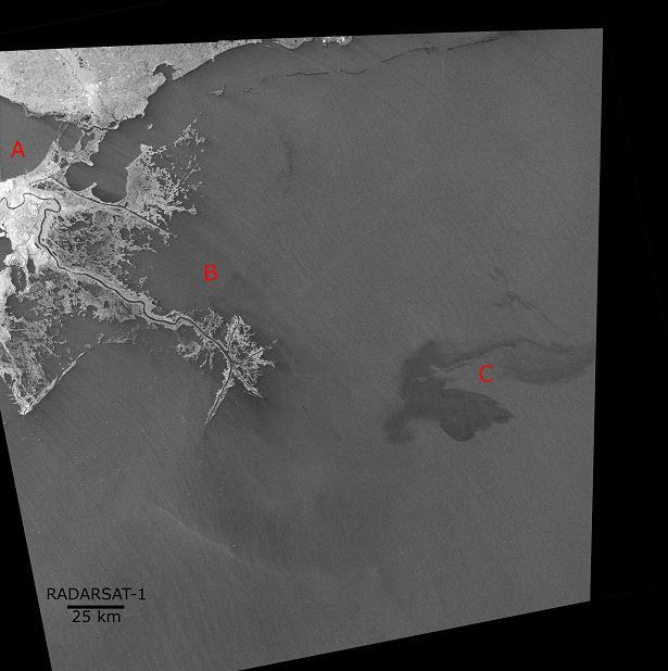 Suivi de la mission Radarsat-2 - Page 2 Missis10