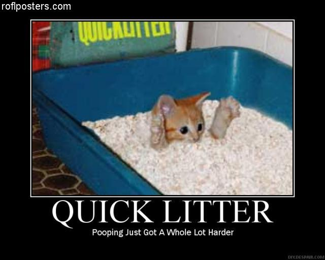 Post LOLcats here - Page 3 12321210
