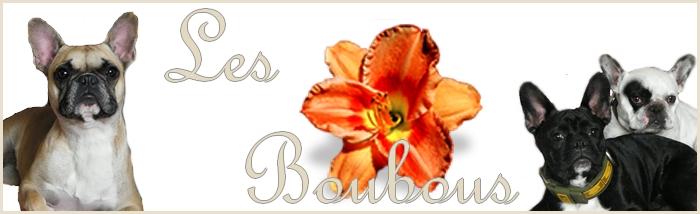 Les Boubous