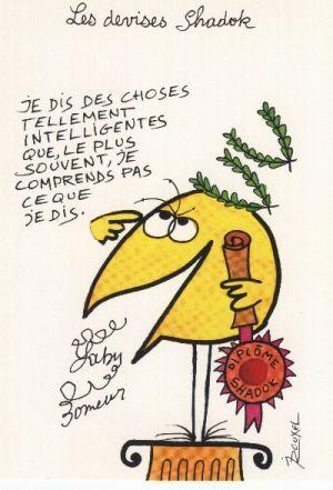 Humour en image ... - Page 2 Shadoc10