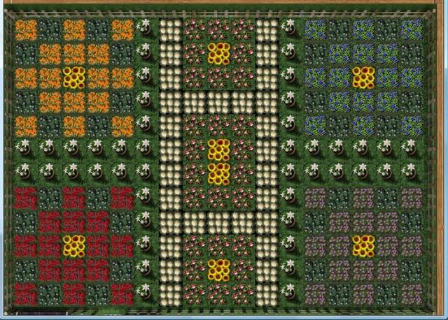 Your First Garden Challenge ~ post entries here Flower13