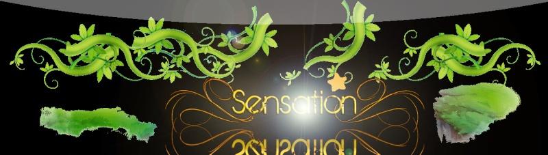 .:.Sensation Flyff.:.