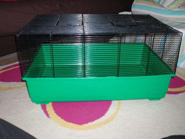 cage paris ou melun P1010346