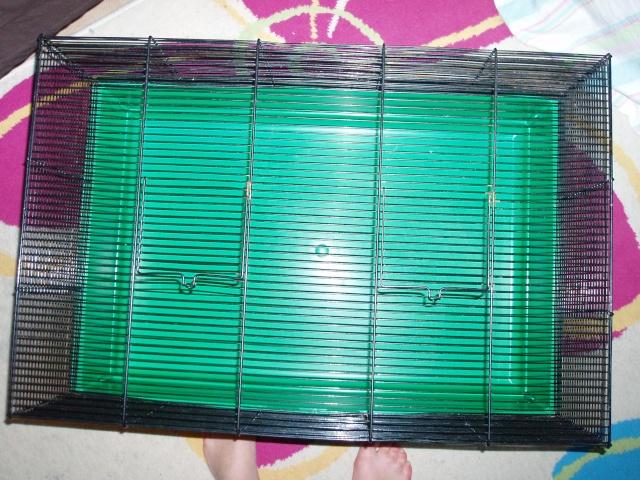 cage paris ou melun P1010347