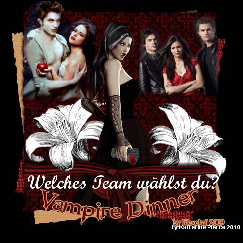 Vampire Diaries & Twilight Mania
