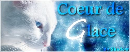 Présentation de Coeur de Glace Coeur_11