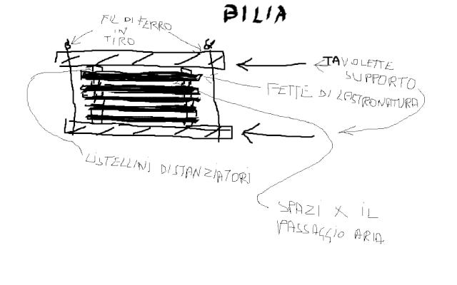 Esperti in legname cercasi! Bilia12