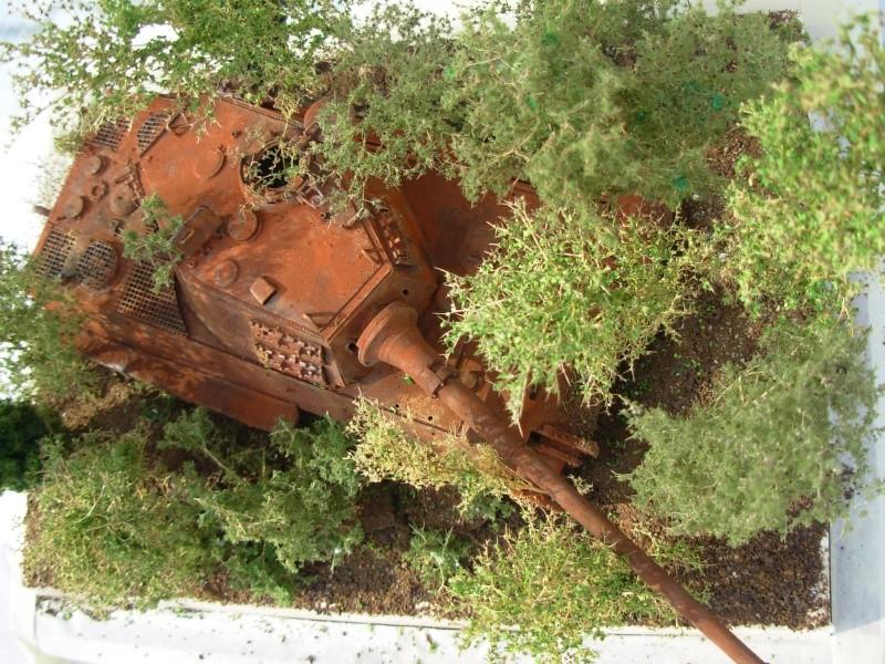 ardennes 1952 Dscn1649