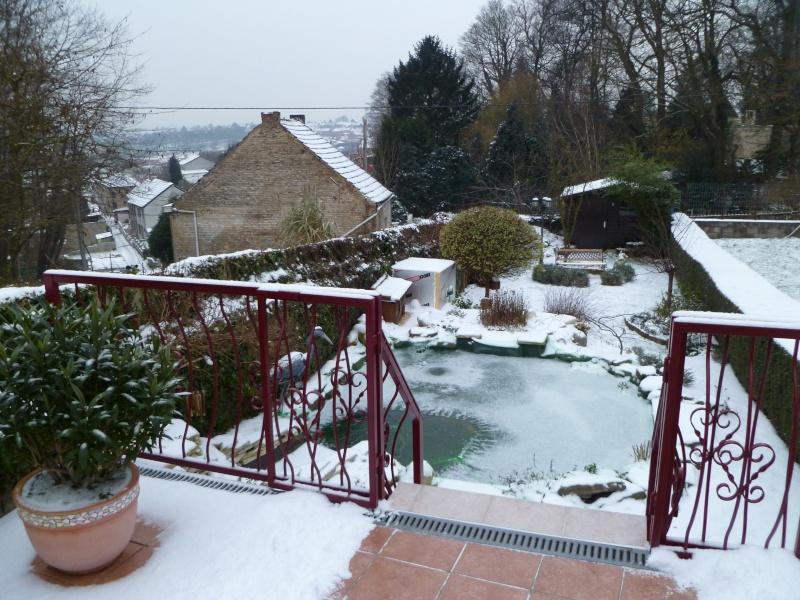 petites photos ce jour de neige et de GRAND FROID !!!!!! P1000710