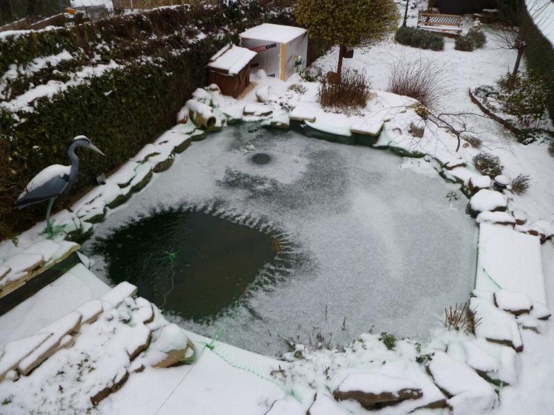 petites photos ce jour de neige et de GRAND FROID !!!!!! P1000711