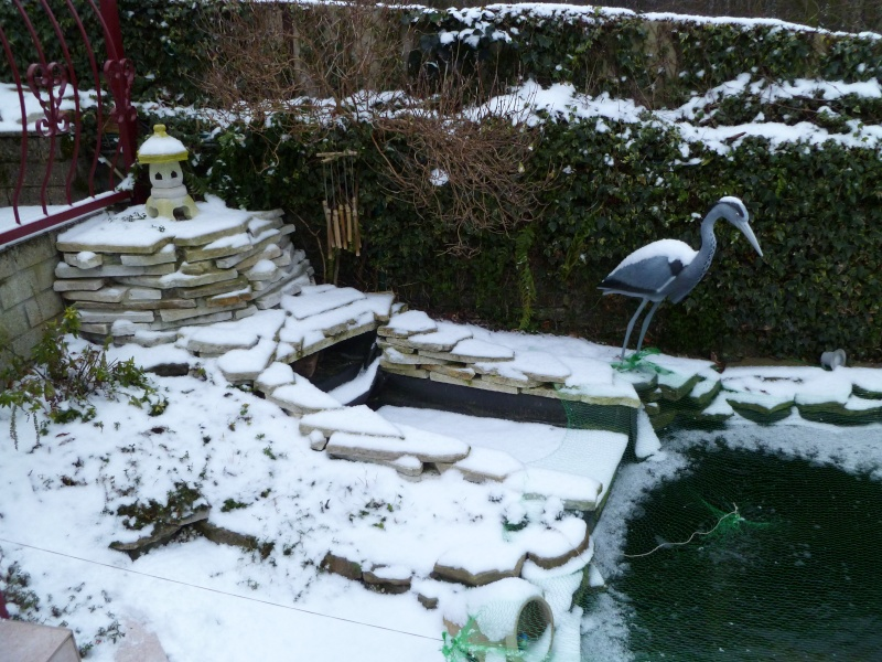 petites photos ce jour de neige et de GRAND FROID !!!!!! P1000712