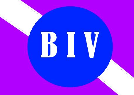 Proposition 1 : Le Bureau International des Villes de tfk59 Biva10
