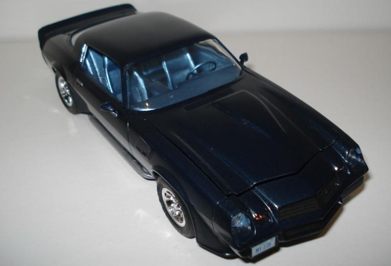 Camaro 1979  Dsc03611