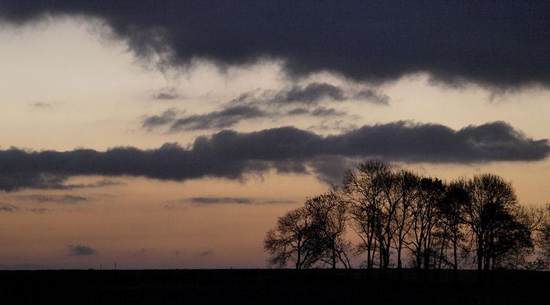 Vos plus belles photos du mois de décembre 2010 09post11