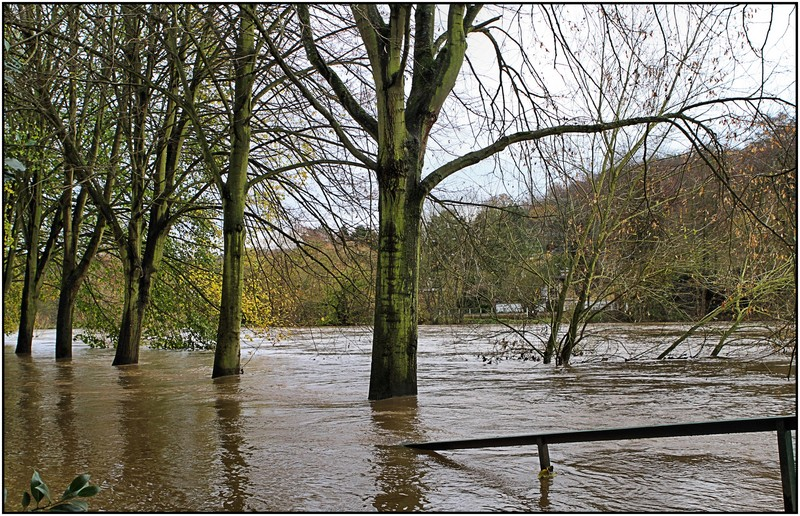 Innondation novembre 2010 Img_4610