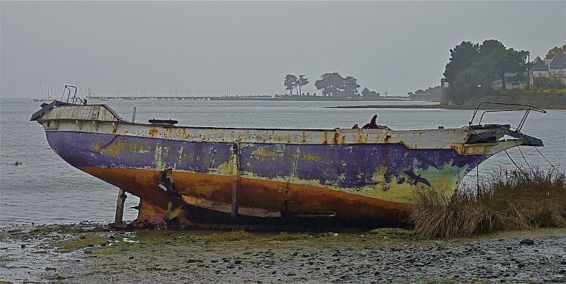 Mizh du, sous le crachin breton... P1040426