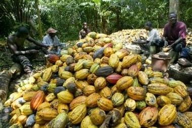 Somalisation imminente de la cote d'Ivoire Souss_12