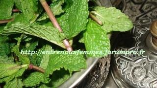 Plantes aromatiques, graines, noix, légumes, poissons, épices ... dans la Cuisine Marocaine Dsc02610