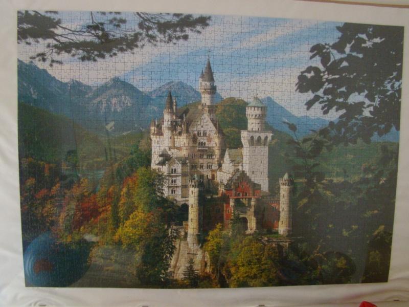 Puzzle 2wq93610