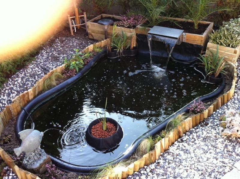 Mon bassin  Img_0910