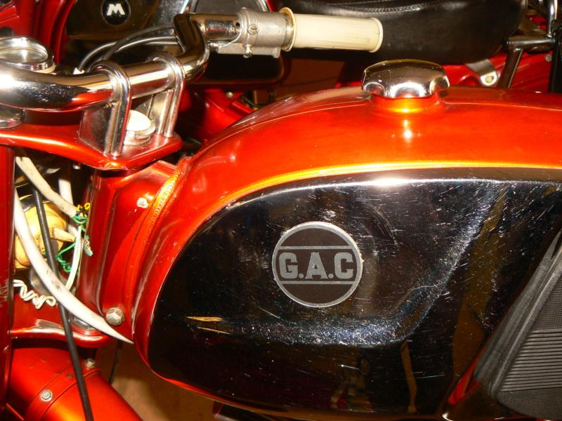 """Logo """"M"""" Campera P1260222"""