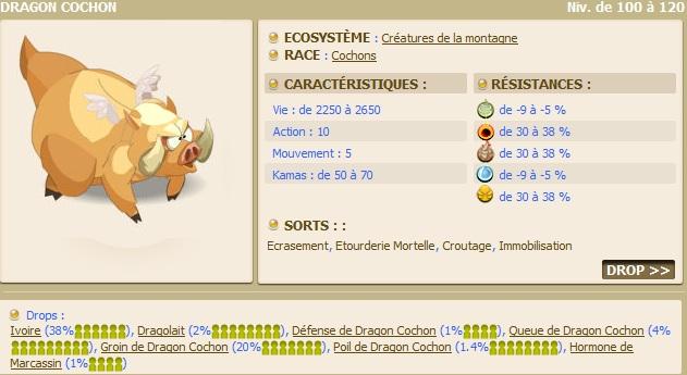 Le Donjon Dragon Cochon Dragon11
