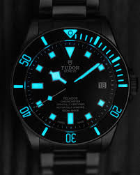 Pelagos - Tudor Pelagos (LHD) ou Omega SM300 Diver  Tzolzo10