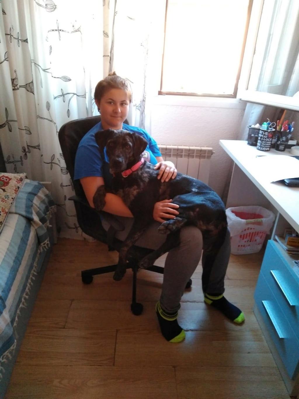 LAIDA adorable chienne 51463b10