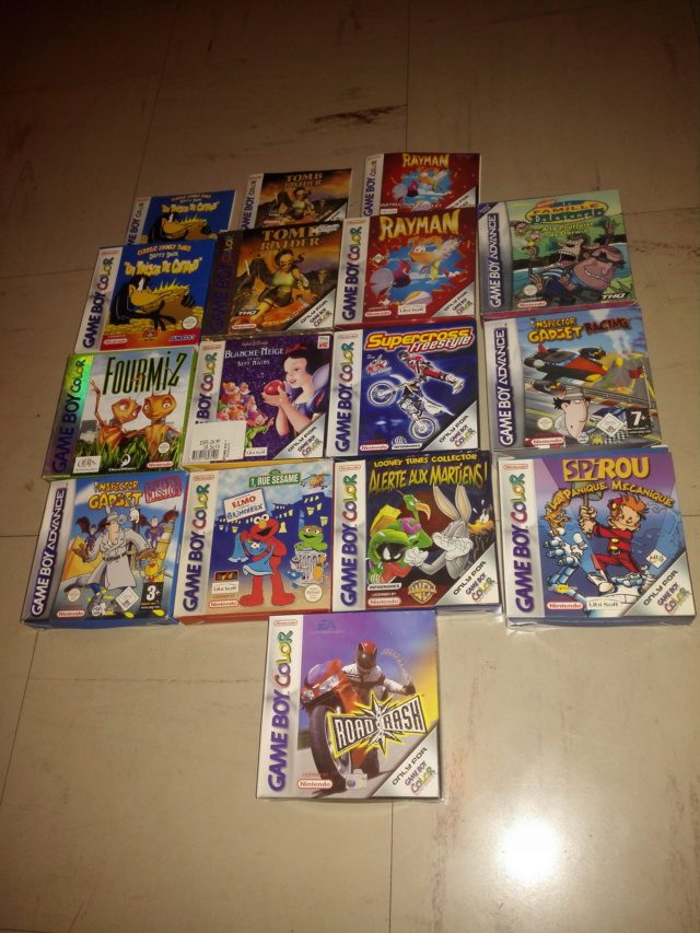 [ESTIM] jeux GB/GBA/PS1/PS2/PC Img_2013