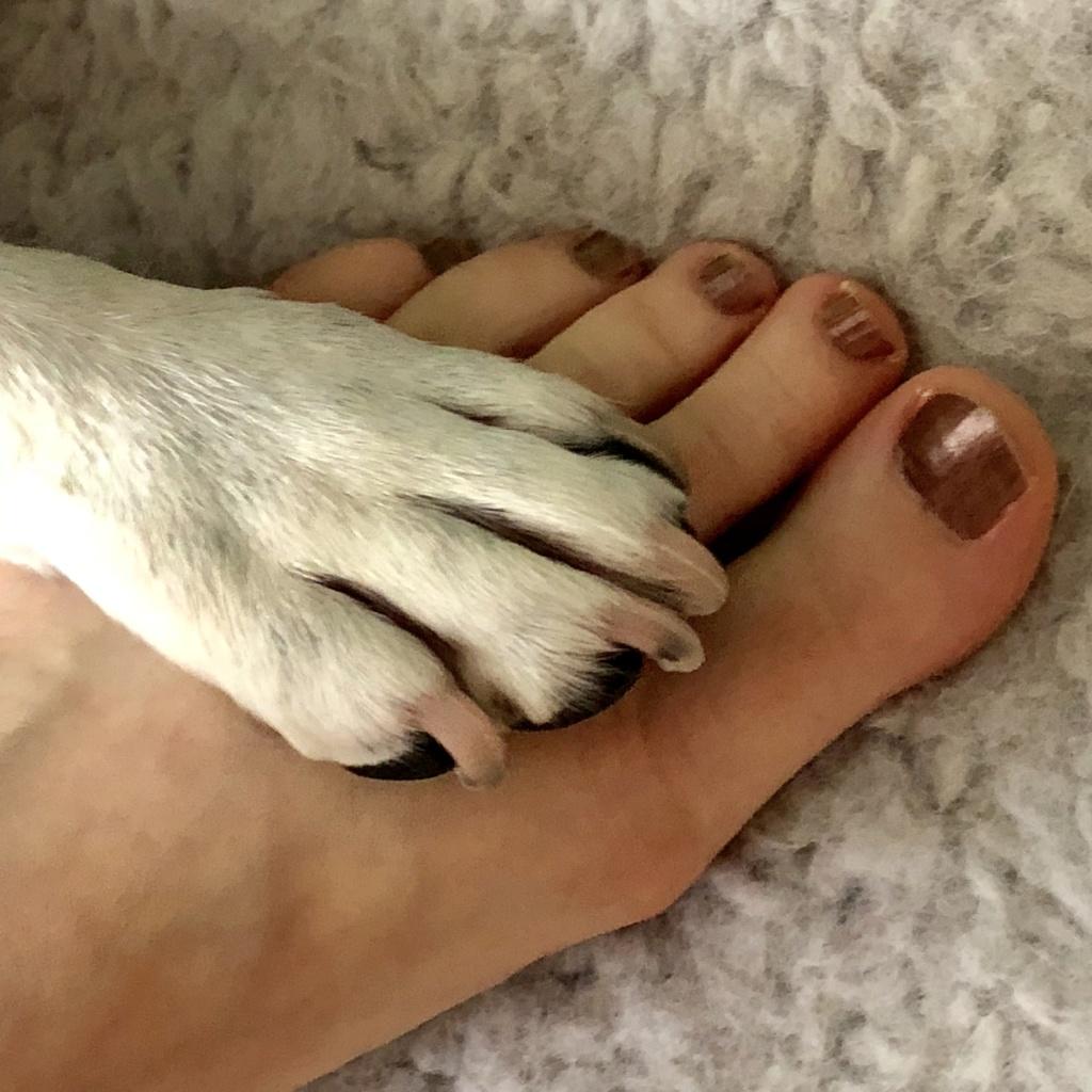 6 juillet : nos pieds Img_3410
