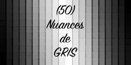 24 mai au 20 juin  (50) nuances de gris par Sandelsa Nuance10