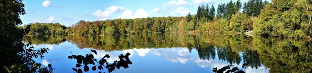 les 1.000 étangs Vosgien  50501710