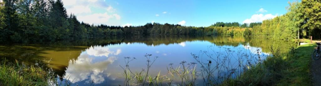 les 1.000 étangs Vosgien  50502410