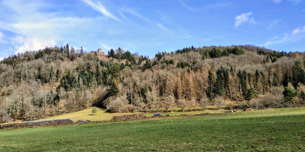 Mes balades dans les 1.000 étangs  ( Vosges )  - Page 2 611