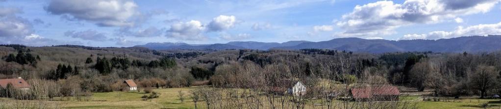 Mes balades dans les 1.000 étangs  ( Vosges )  - Page 2 6310