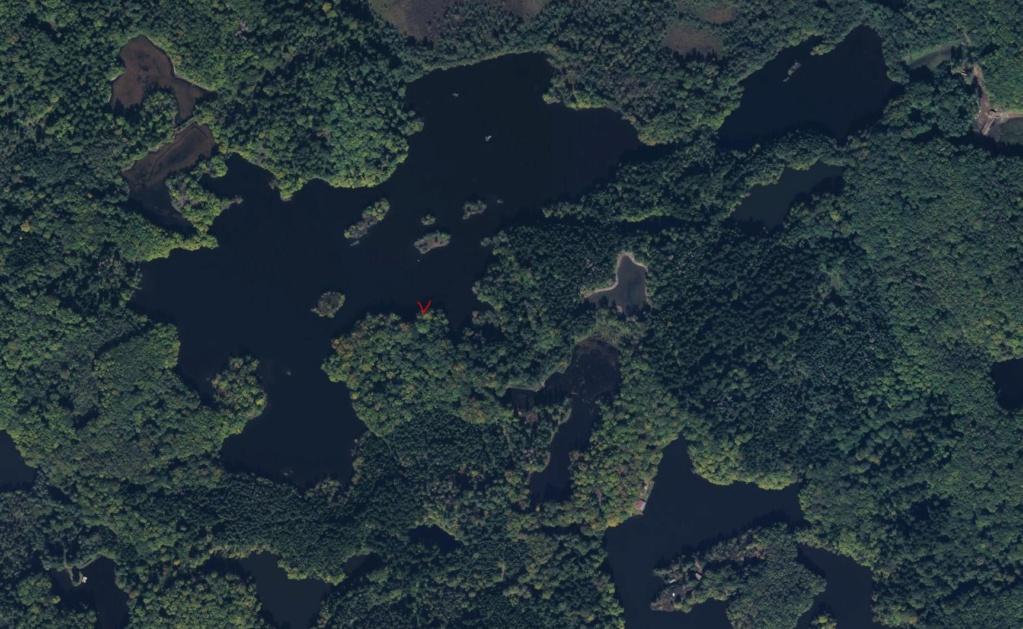 L'étang d'ARFIN   dans les 1.000 étangs Vosgien  Arfin11