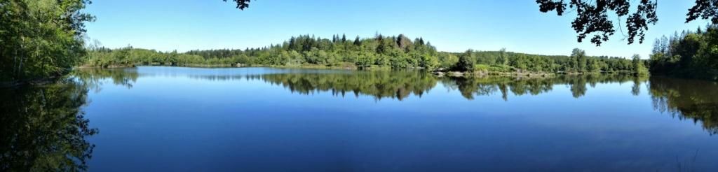L'étang d'ARFIN   dans les 1.000 étangs Vosgien  Arfin_12