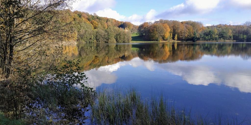 Mes balades dans les 1.000 étangs  ( Vosges )  Arm_t10