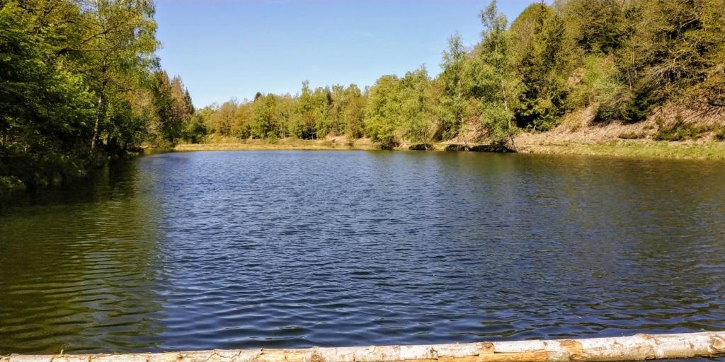Mes balades dans les 1.000 étangs  ( Vosges )  Boffy10