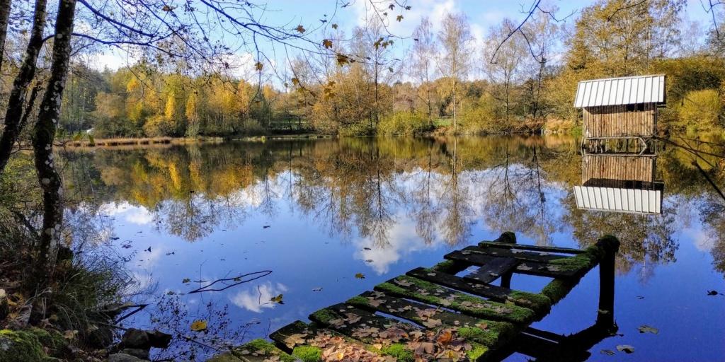 Mes balades dans les 1.000 étangs  ( Vosges )  Ecro410