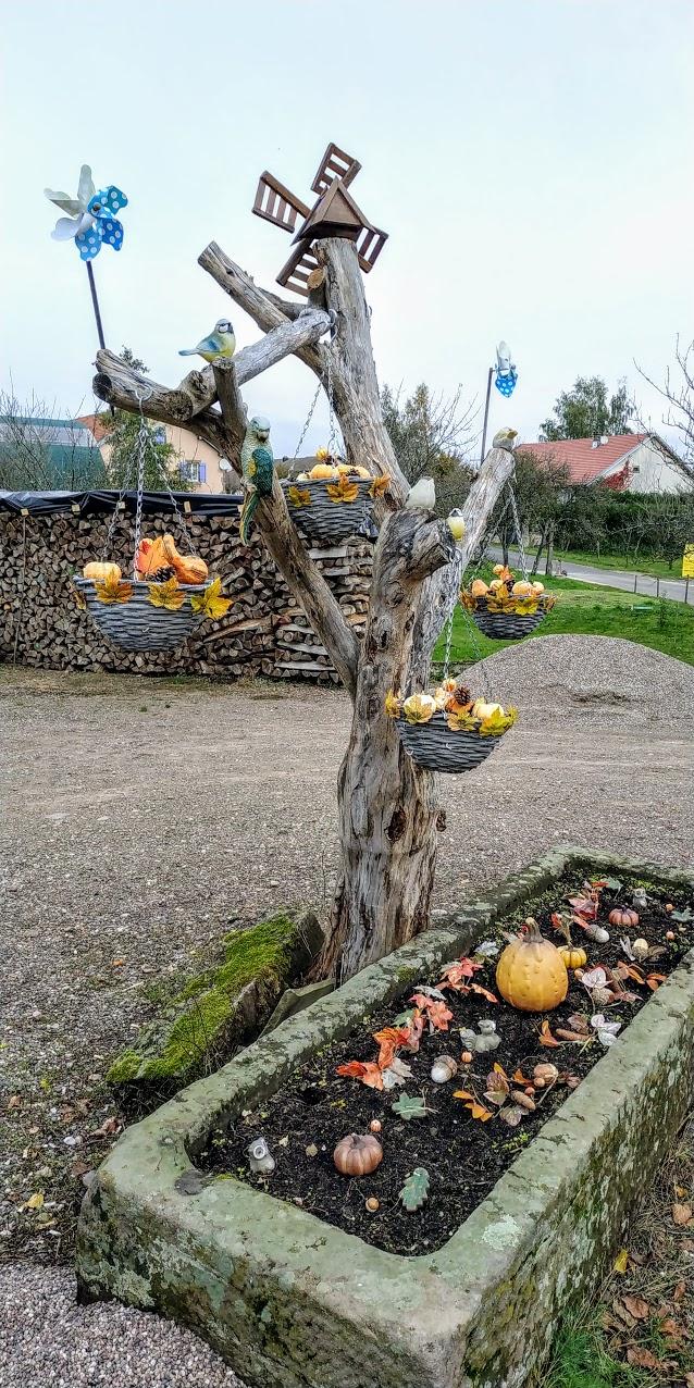 Mes balades dans les 1.000 étangs  ( Vosges )  Ecry10