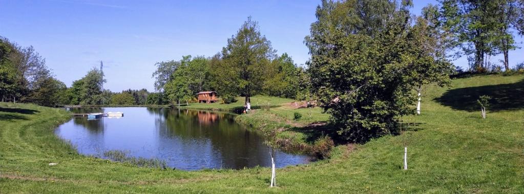 Mes balades dans les 1.000 étangs  ( Vosges )  Grillo10